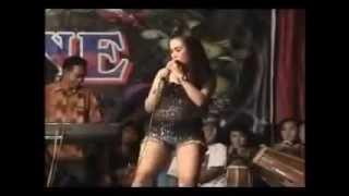 Download Video Dangdut Pantura Hot Buka BH dan CD Goyang Heboh Terbaru 2014 MP3 3GP MP4