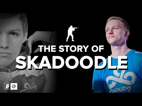 The Story Of Skadoodle