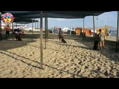 DOG BEACH VILLAGE - Spiaggia Per Cani