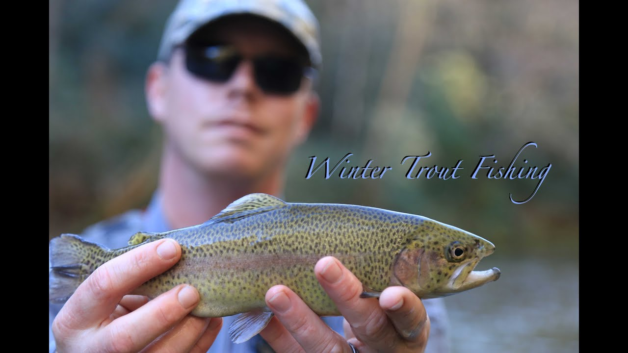Winter chattooga river trout fishing youtube for Youtube trout fishing