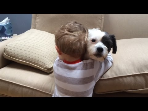 Dog Won't Fetch but His Boy Still Loves Him