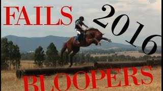 Horse bloopers and fails 2016