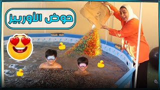 مليون اوربيز في المسبح حماسنا مليون 😂- عائلة عدنان