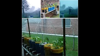 Aquaponic Garden Slammed by Severe Weather Before,  During,  & After