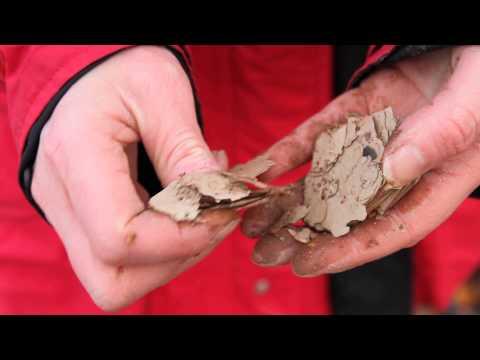Flaking oil shale waste