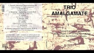 TRIO AMALGAMATE Sampler