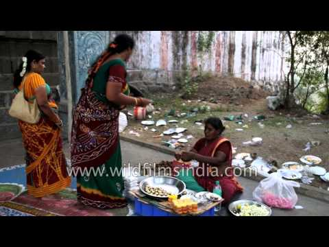 Fortune telling and parrot astrology in India