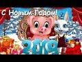 Zoobe Зайка Поздравление с Новым годом Свиньи!!! 2019!!!
