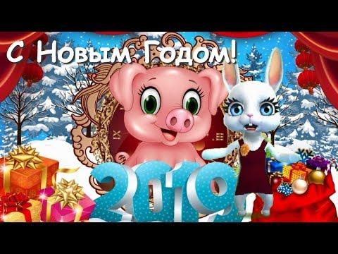 Zoobe Зайка Поздравление с Новым годом Свиньи!!! 2019!!! - Как поздравить с Днем Рождения