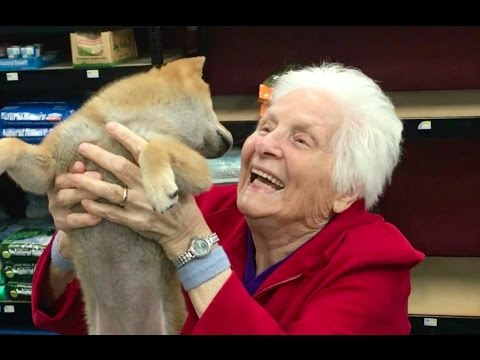 GRANDMA'S FIRST TRIP TO THE PET STORE | Ross Smith