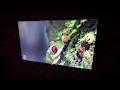 Samsung UN65KS8000FXZA 65-inch 4K HDR TV Unboxing & Setup