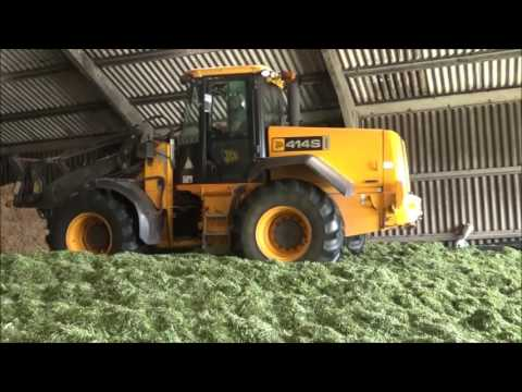 Silage making 2017. Part 3. Filling the clamp