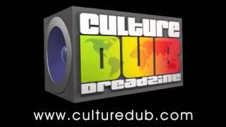 La Nuit du Dub #12 - Teaser - © Culture Dub