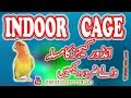 Indoor Cages k nuqsanat say kaisay bacha jayah. Vitamin D3 ki kami ko poora karain. Video No 168
