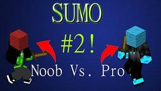 Noob vs. Pro | Minecraft Sumo Episode 2