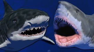LEVEL 100 TIGER SHARK VS GREAT WHITE - Feed and Grow (King of The Ocean Update)
