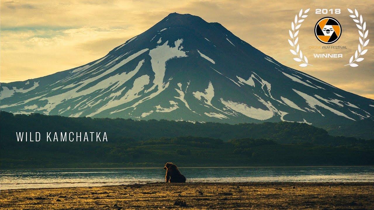 Dzika Kamczatka - dokument