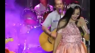 Elsa Safira - POLISI Live feat New Pallapa TERBARU 2018