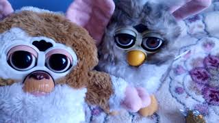 New Gizmo, rare furby original and little furby keychain