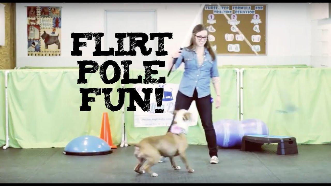 buy a flirt pole