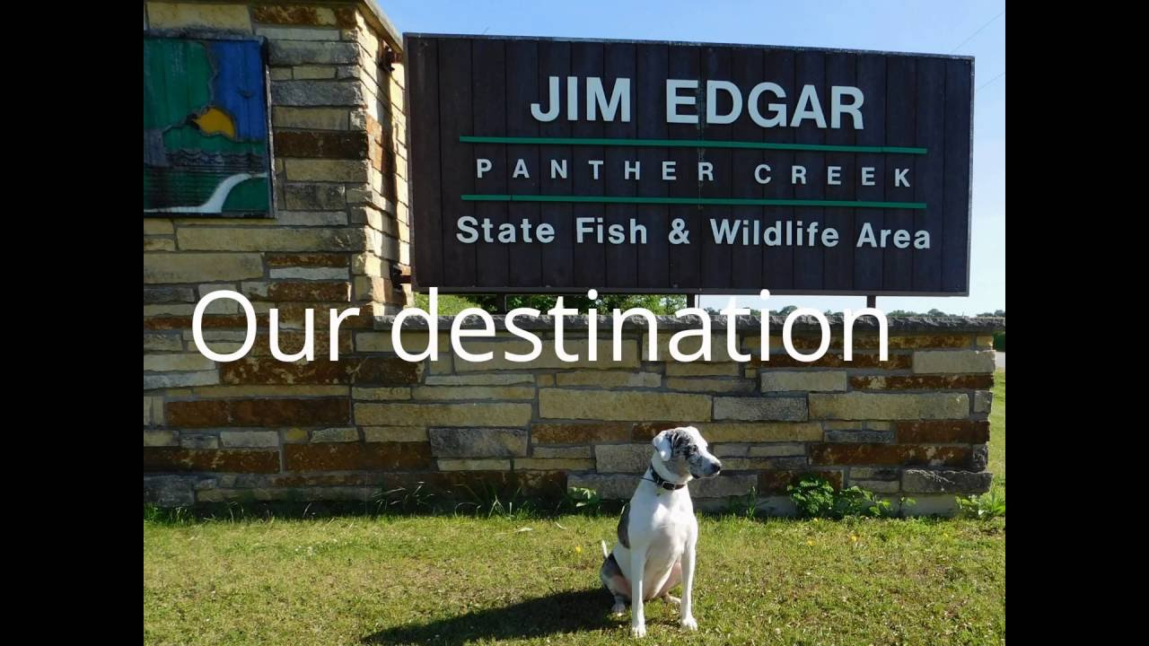Jim Edgar Panther Creek State Fish and Wildlife Area by Dog Sulky
