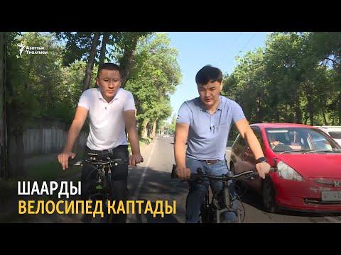 Шаарды велосипед каптады