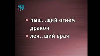 Русский язык. Урок 7. Правописание суффиксов