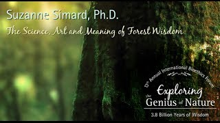 The Science, Art and Meaning of Forest Wisdom  Suzanne Simard, Ph.D.