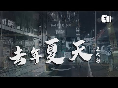 王大毛 - 去年夏天『還有什麼等待?還有什麼悲哀?』【動態歌詞Lyrics】