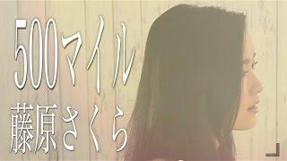 500マイル/藤原さくら 『ラブソング』挿入歌- 忌野清志郎(Cover by コバソロ & 安果音) thumbnail