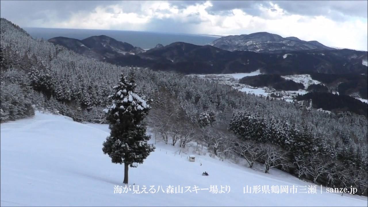 県 スキー 連盟 山形