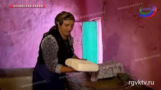 «Дагестанский крокодил». За этим сыром в Кулинский район приезжают даже из-за границы