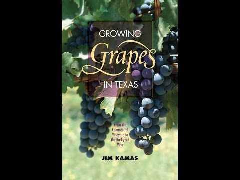 Growing Grapes in Texas |Jim Kamas |Central Texas Gardener