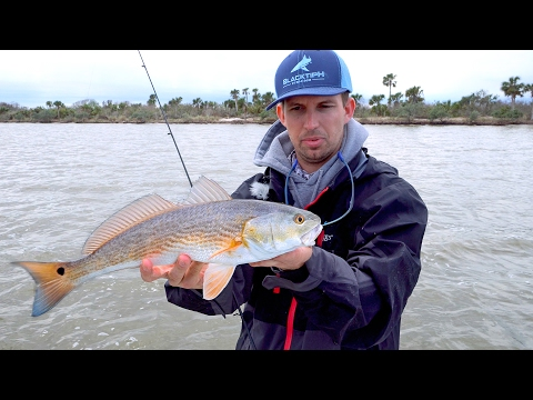 Fishing For Redfish In The Mosquito Lagoon