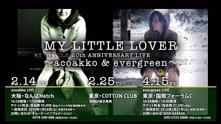 MY LITTLE LOVER 20th ANNIVERSARY LIVE ~acoakko & evergreen~ チケ...