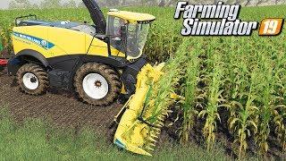 Koszenie kukurydzy - Farming Simulator 19   #58