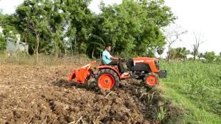 Kubota  India A211N in sugarcane fields
