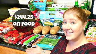 Large Weekly Grocery Haul & Meal Plan | Family of 6