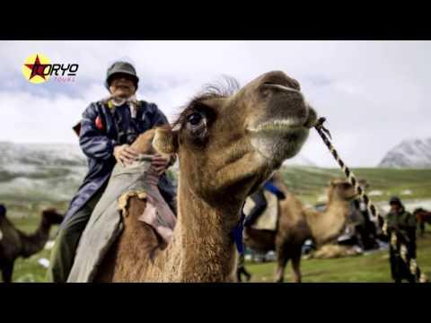 Mongolia: Beyond the Steppes Tour 2016