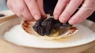 Instructies 1: Koken met Sidney - Voorgerecht