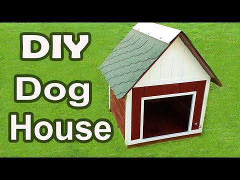 How to Build a Beautiful Dog House