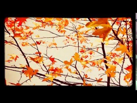 Bic Runga: Autumn Leaves (Subtitulada en español)