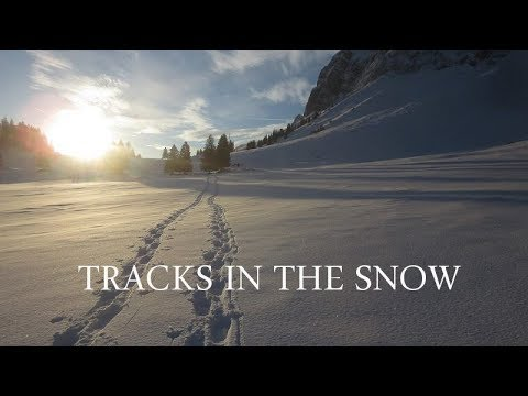 tracks-in-the-snow-|-paranormal-story