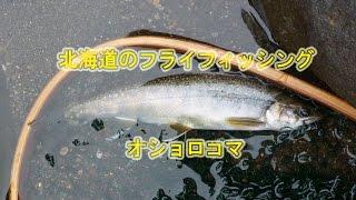 釣りや魚の情報満載のメルマガ配信中登録ください。 ホームページよりど...