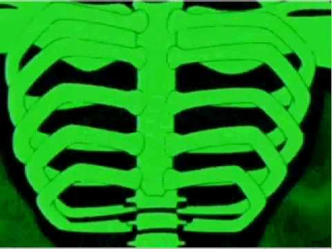 Ben 10 alien force: diamondhead transformation