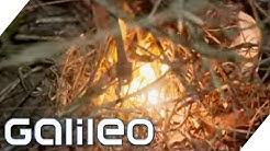 Feuermachen ohne Hilfsmittel | Galileo Lunch Break