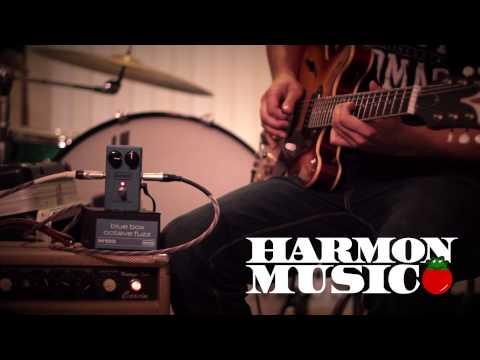 MXR M103 Blue Box Octave Fuzz Demo - Harmon Music - HIGH DEFINITION