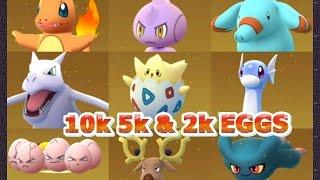 Pokémon GO 40 EGG Hatches & Catches Dratini Togepi Blastoise & lots more!