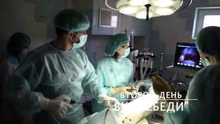 ЭндоШкола. Обучение в ветеринарной клинике Лебеди  в апреле 2014