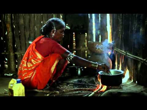 The indigenous tribes - gonds